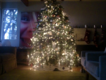 our tree II