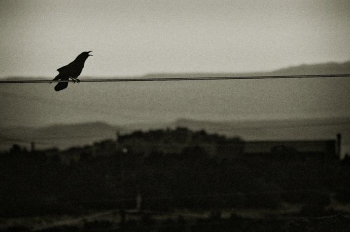 image courtesy Bytegirl on Flickr